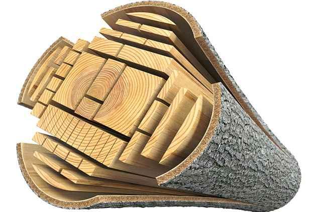 Строение древесины для домов из бруса