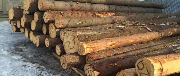 Привезли свежий зимний лес под срубы домов из бревна