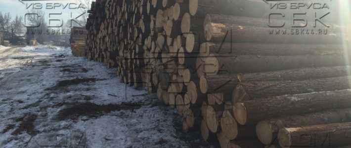Зимний лес на строительство деревянных домов