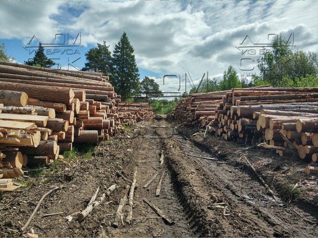 Зимний лес под строительство деревянных домов 2018г (4)