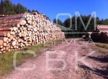 Заготовка костромского леса - штабеля леса