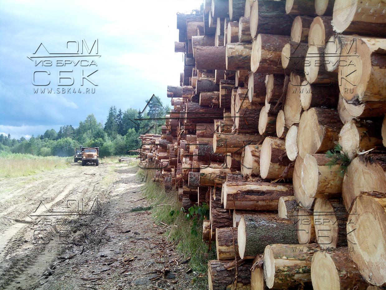 Круглогодичная заготовка леса для строительства деревянных домов