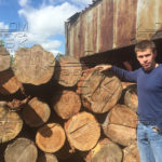Зимний лес под дом из бруса летом - ответ заказчику