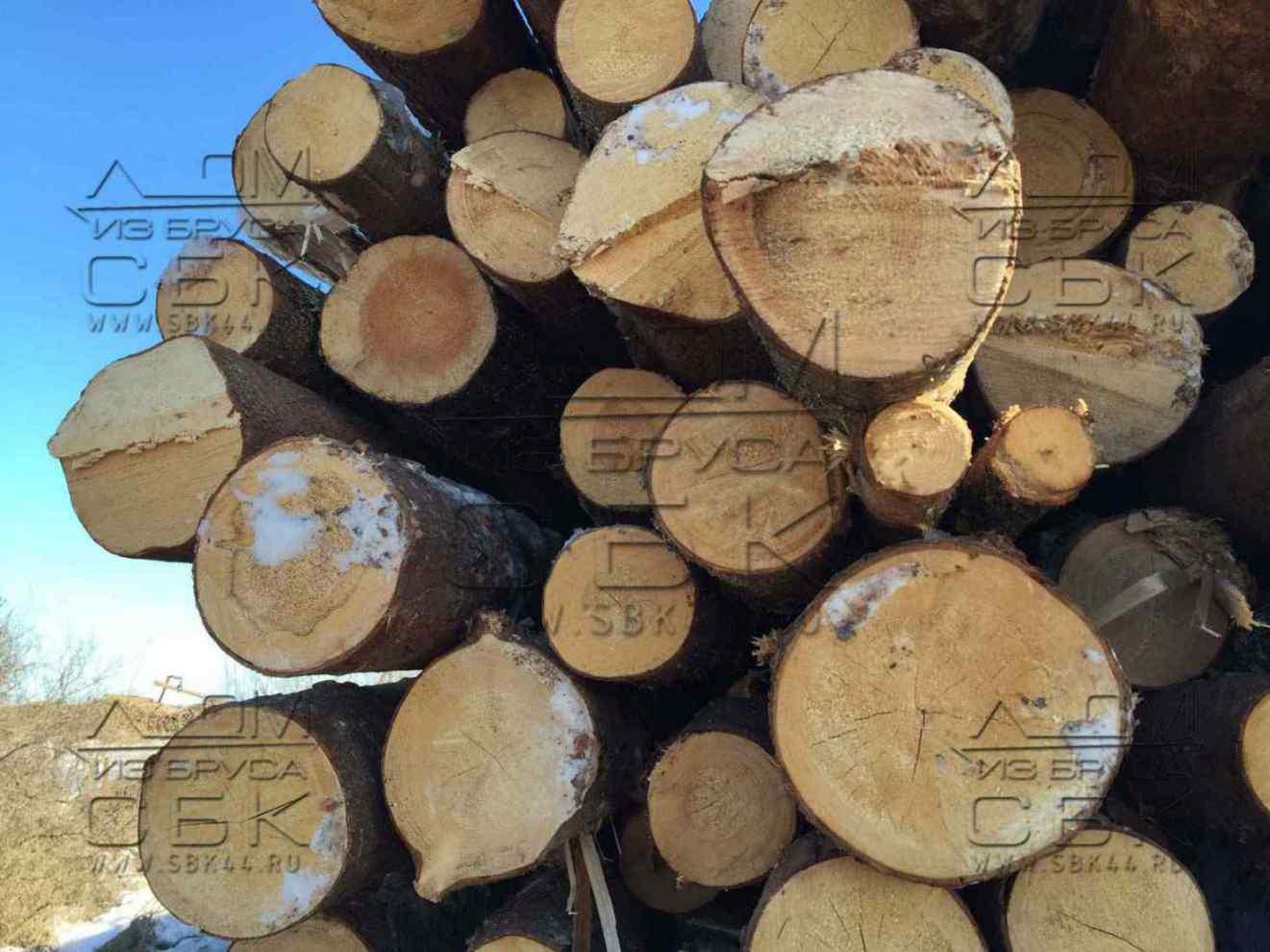 Запасаемся зимним лесом под строительство домов из бруса - пиловочник