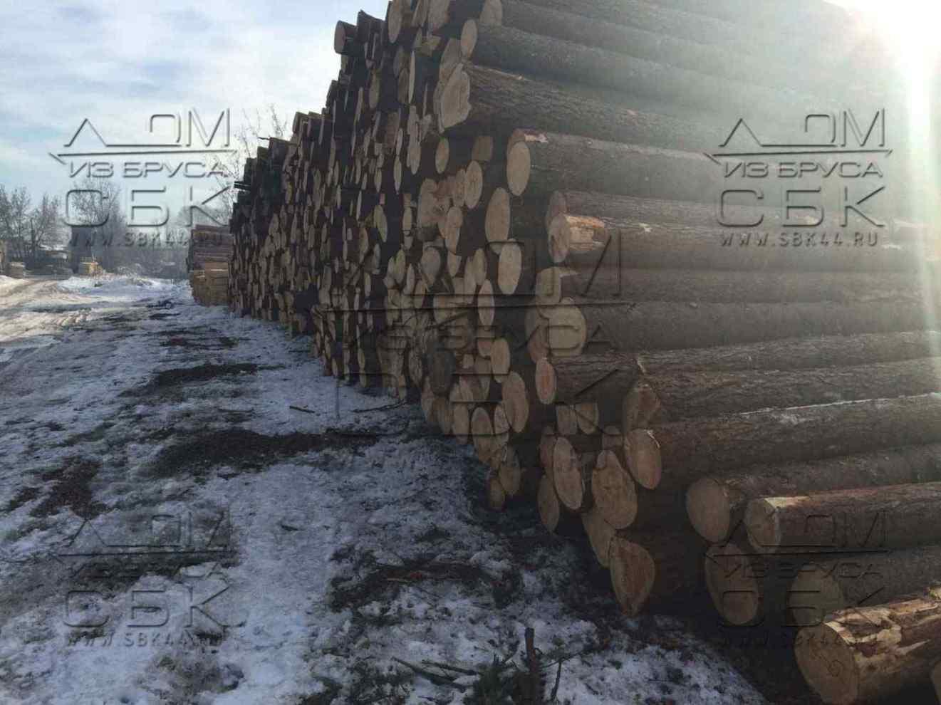 зимний лес на строительство