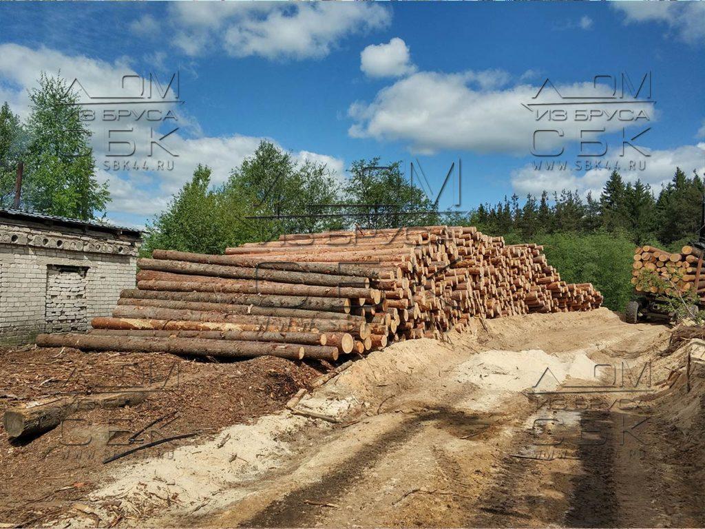Зимний лес под строительство деревянных домов 2018г (1)
