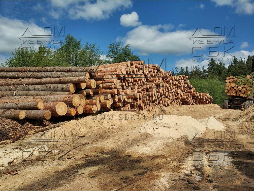 Зимний лес под строительство деревянных домов 2018г (2)