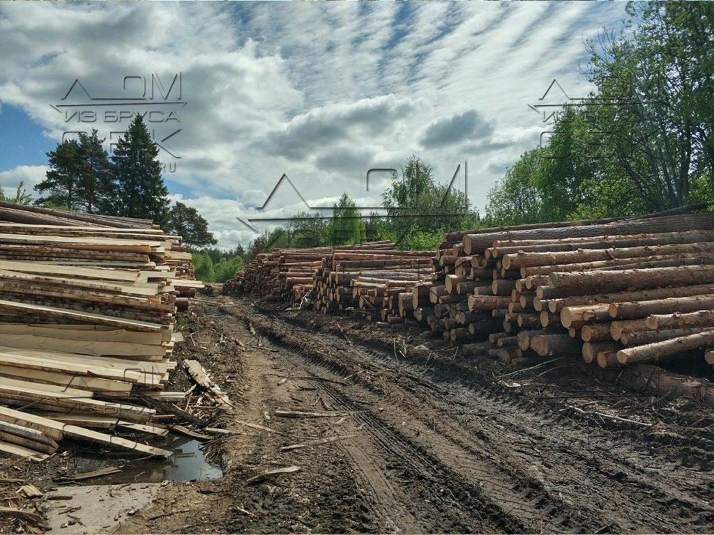 Зимний лес под строительство деревянных домов 2018г (3)