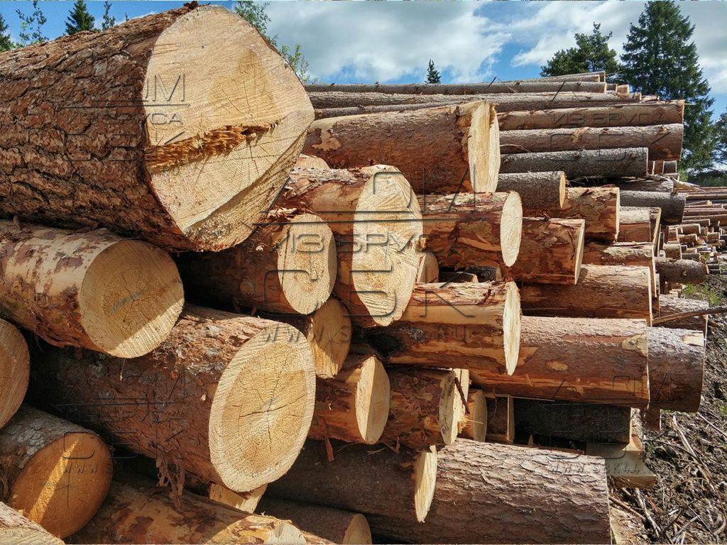 Зимний лес под строительство деревянных домов 2018г (5)