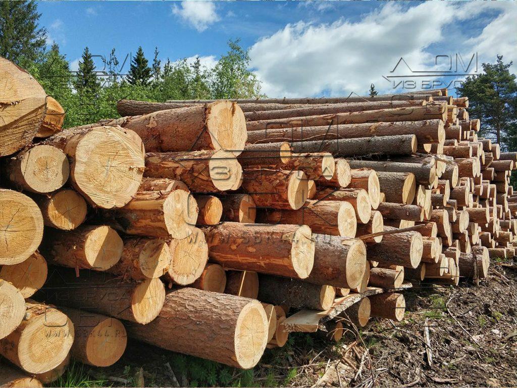 Зимний лес под строительство деревянных домов 2018г (6)